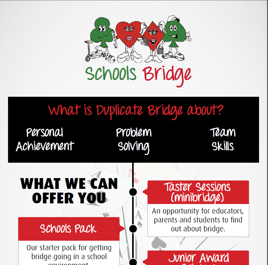 Bridge In Schools Image